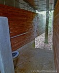 View of the inside of Long Toilet. This toilet has no back wall and there is a tree between the two side walls.